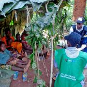 Moloundou, Est Cameroun, Causerie éducative dans un campement baka.